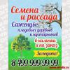 Vyveska-cvet-magazin_14-02